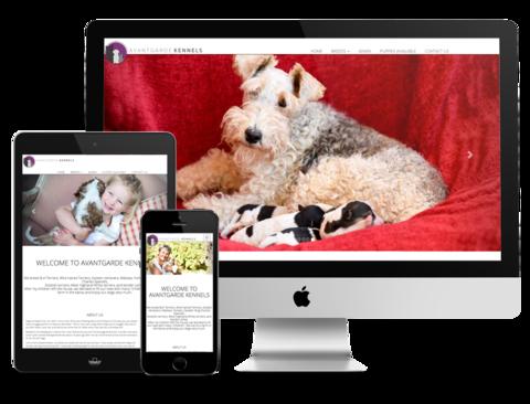 Avantgarde Kennels Website Design